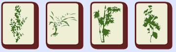 mahjong flower