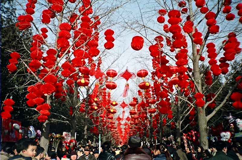 red lantern, lantern, chinese new year, spring festival